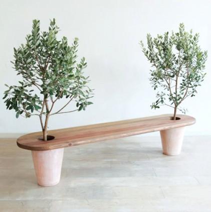 Homemyhome decoration intérieure banc de bois avec pots d'oliviers , inspiration design écologico-poétique