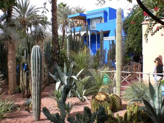 Homemyhome, décoration intérieure inspiration Le Jardin Majorelle à Marrakech, des cactus et une villa bleue