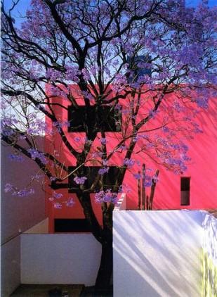 #colour#inspirationcouleur#interiordesign#barragan#couleurspop