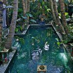 #homemyhomearchitectureetdécorationintérieure#espriturbanjungle#design#piscineetropicale#tropicalspirit#