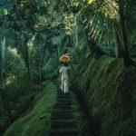 #homemyhomedécorationintérieure#tropicalstyle#nature#